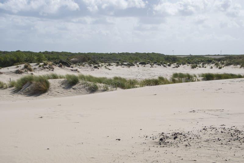 Paesaggio costiero della spiaggia al Mare del Nord immagine stock