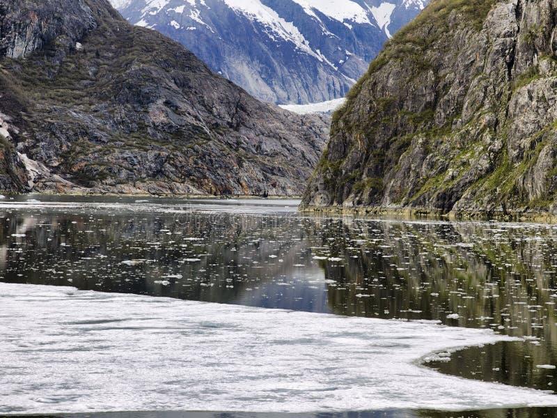 Paesaggio costiero scenico con le scogliere glaciale lucidate ripide ed il ghiaccio di galleggiamento a Tracy Arm Fjord immagini stock