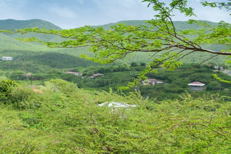 Paesaggio Curacao fotografia stock libera da diritti