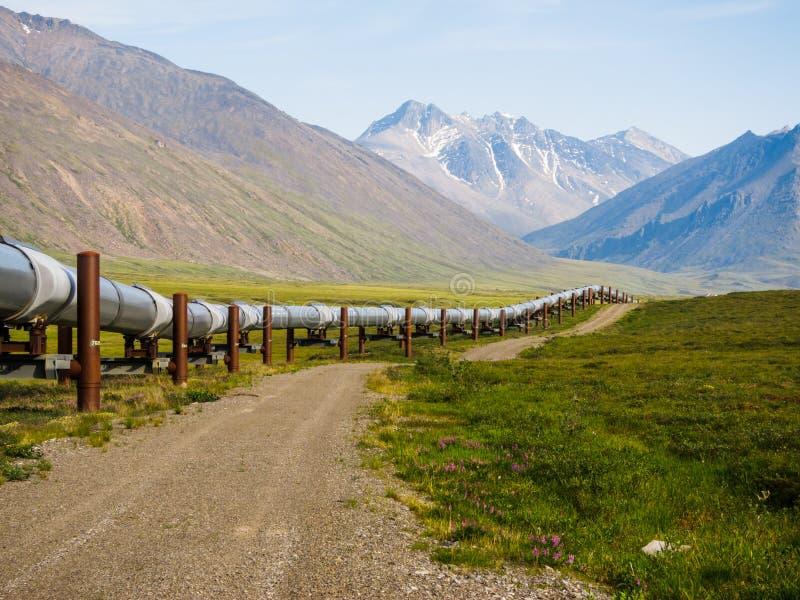 Paesaggio d'Alasca immagine stock libera da diritti