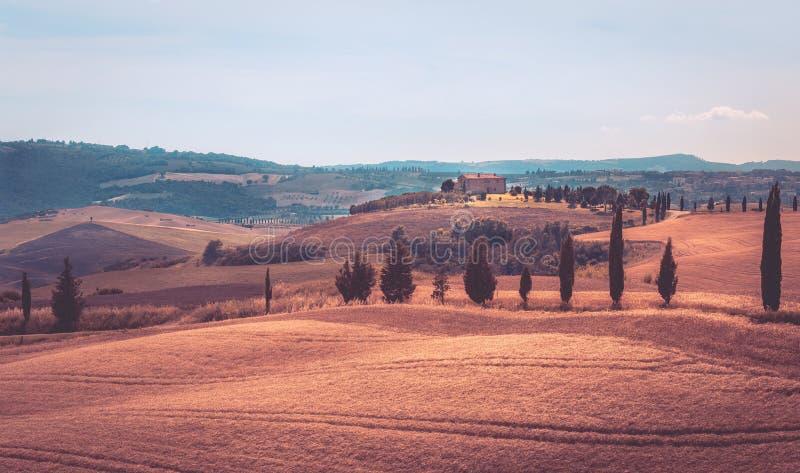Paesaggio d'annata toscano fotografie stock libere da diritti