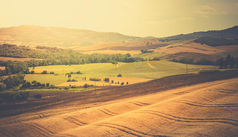 Paesaggio d'annata toscano fotografia stock libera da diritti