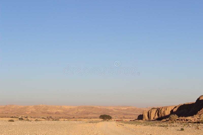 Paesaggio da solo la traccia di Negev in Israele immagine stock libera da diritti