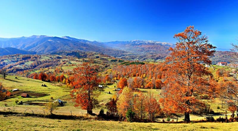 Paesaggio dalle montagne di Parang, il distretto di Hunedoara, Romania immagine stock