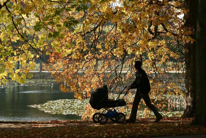 Paesaggio danese fotografia stock libera da diritti