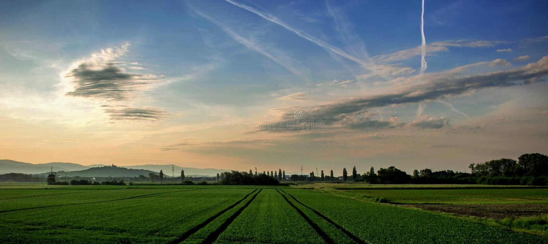 Paesaggio dei campi e dei prati ad alba immagine stock