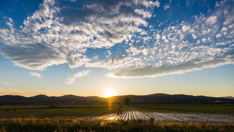 Paesaggio dei campi e delle aziende agricole coltivati con catena montuosa nei precedenti Impianto di irrigazione per agricoltura fotografia stock libera da diritti