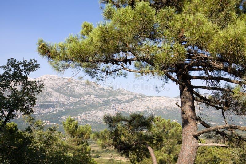 Paesaggio del Balcani fotografia stock libera da diritti