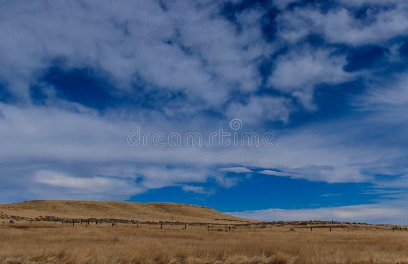 Paesaggio del cielo e di Montana Field fotografia stock libera da diritti