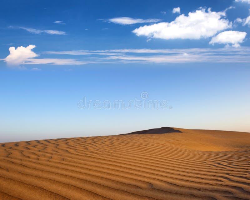 Paesaggio del deserto fotografia stock