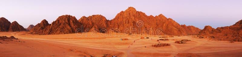 Paesaggio del deserto del Sinai immagine stock