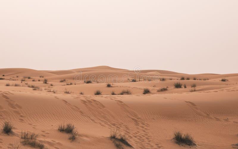 Paesaggio del deserto del Dubai immagine stock libera da diritti