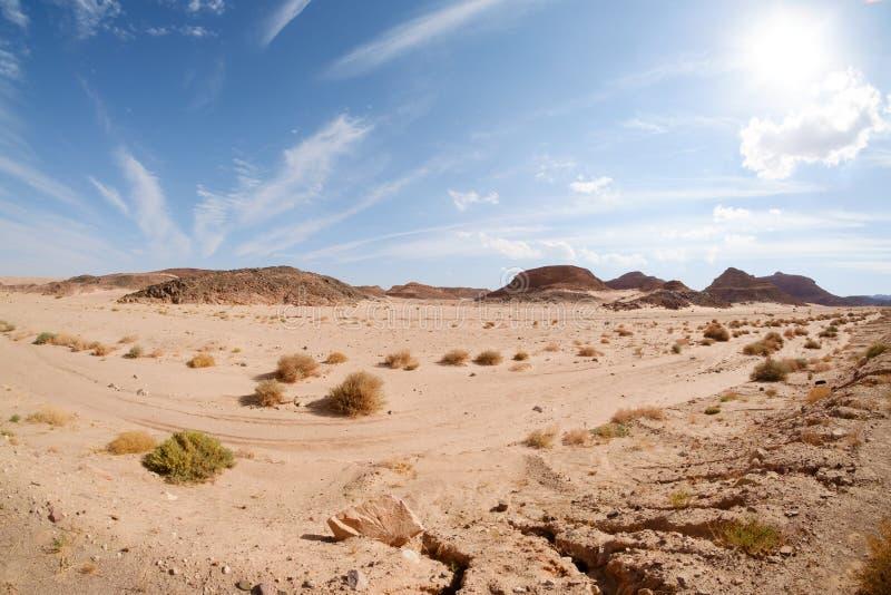 Paesaggio del deserto, Egitto, Sinai del sud immagine stock