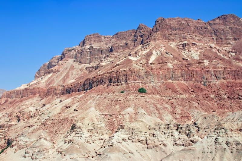 Paesaggio del deserto (scena biblica) immagini stock libere da diritti