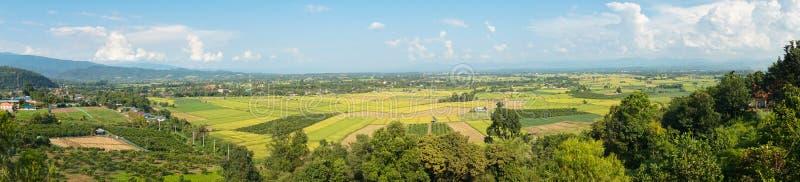 Paesaggio del distretto della zanna in Tailandia fotografie stock libere da diritti
