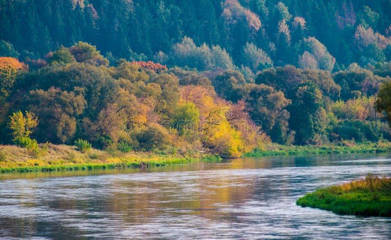 Paesaggio del fiume immagine stock