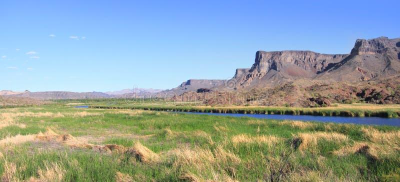 Paesaggio del fiume di Bill Williams fotografie stock