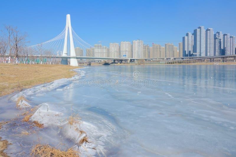 Paesaggio del fiume di inverno fotografia stock libera da diritti