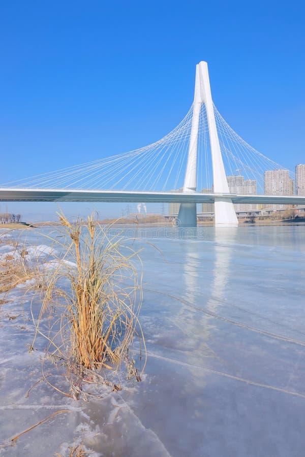 Paesaggio del fiume di inverno immagini stock