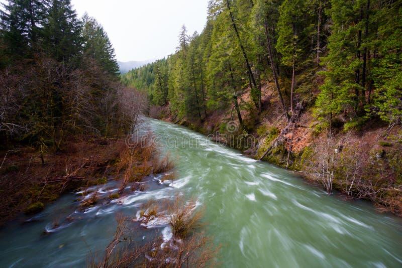 paesaggio del fiume di willamette da sopra immagine stock On cabine del fiume oregon
