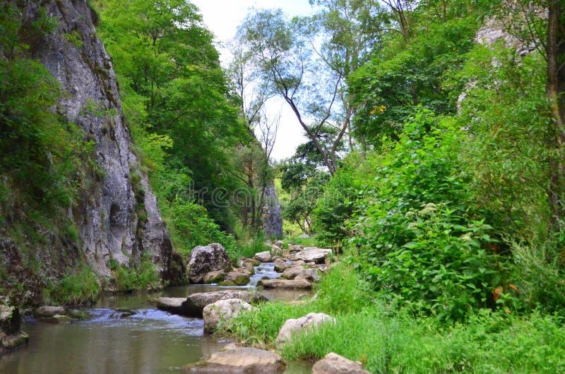Paesaggio del fiume - passaggio #2 di Turda fotografia stock libera da diritti