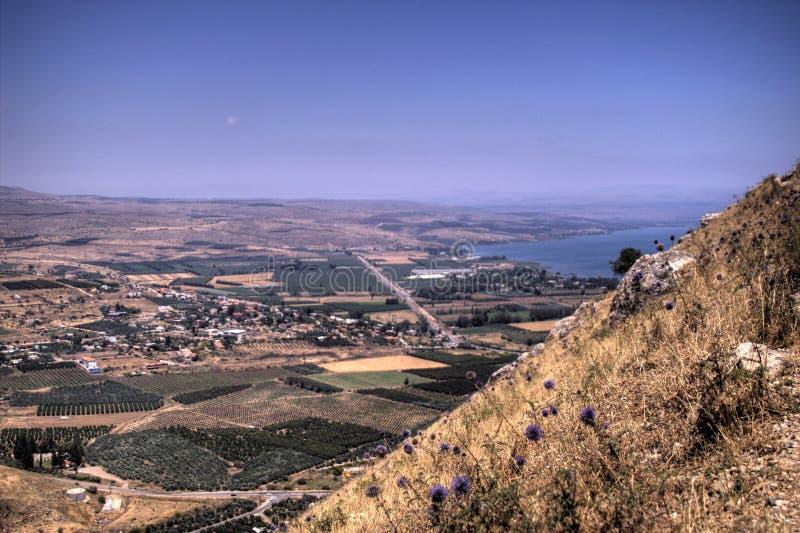 Download Paesaggio del Galilee immagine stock. Immagine di colline - 3882219