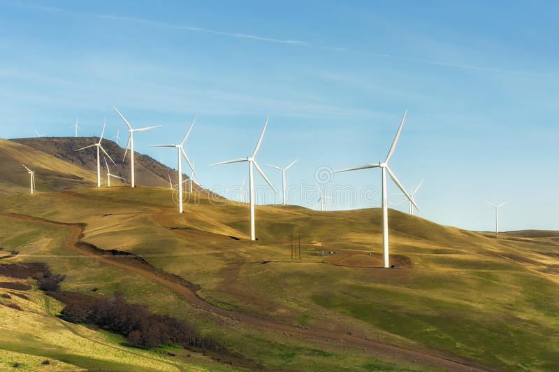 Paesaggio del generatore eolico della gola del fiume Columbia fotografia stock