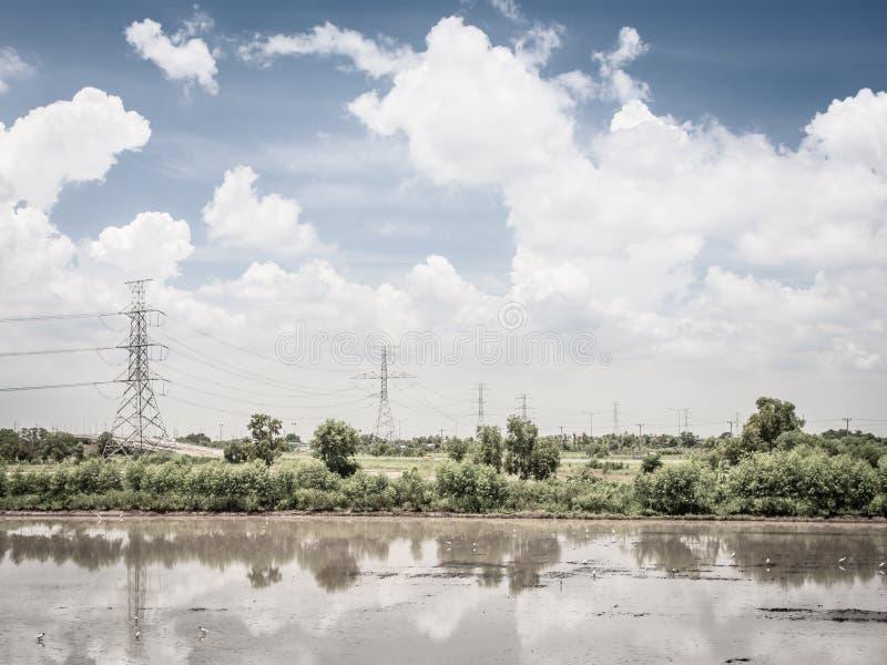 Paesaggio del giacimento del riso e cielo blu e nuvole verdi con la riflessione in acqua immagine stock libera da diritti