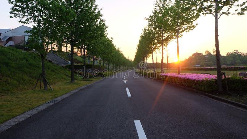 Paesaggio del Giappone fotografie stock