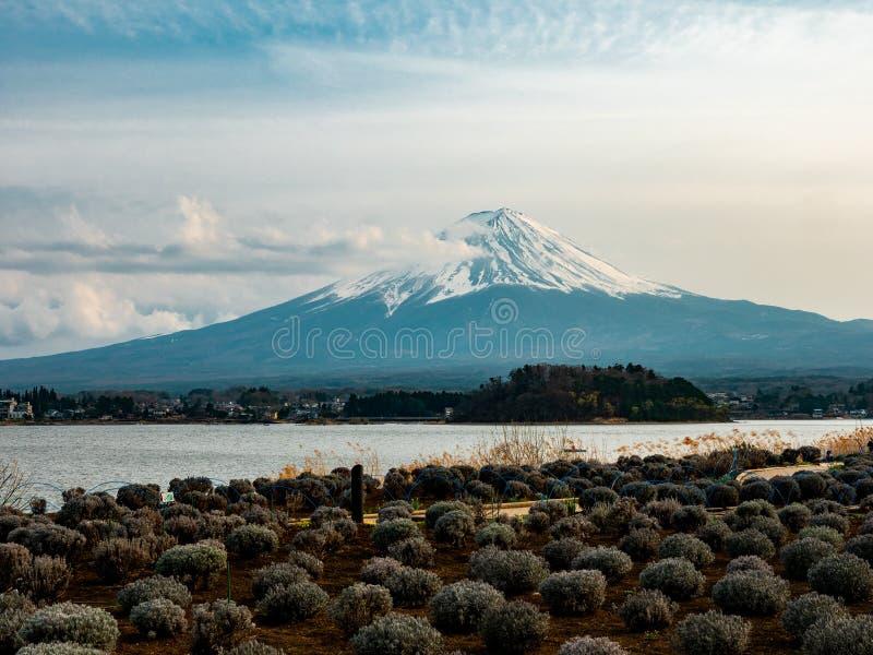 Paesaggio del Giappone della montagna di Fuji fotografie stock libere da diritti