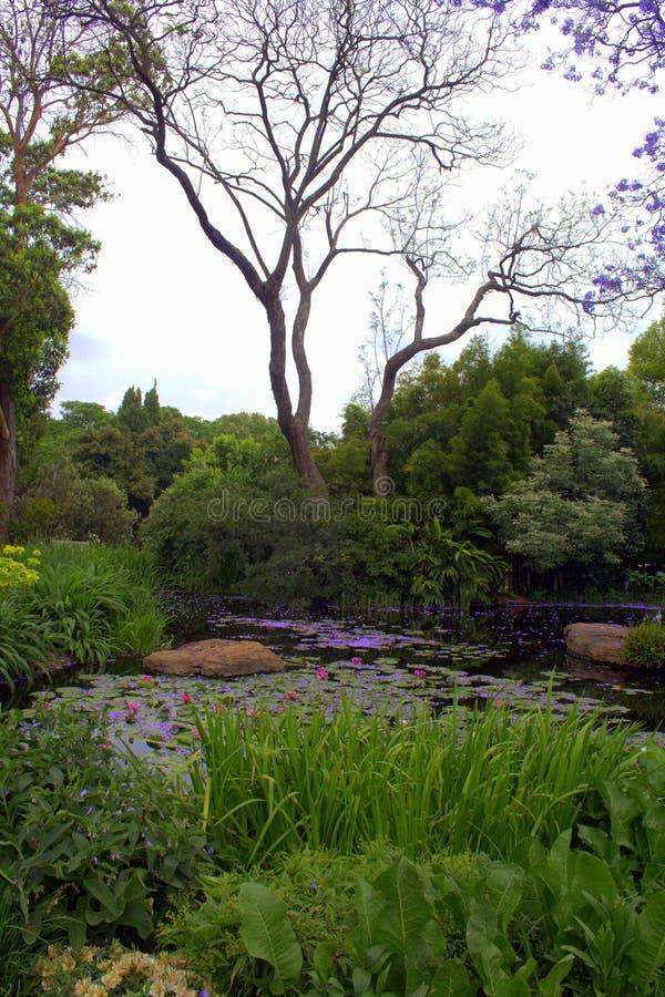 Paesaggio del giardino fotografia stock