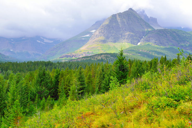 Download Paesaggio Del Glacier National Park Fotografia Stock - Immagine di partenza, ghiacciaio: 55357700