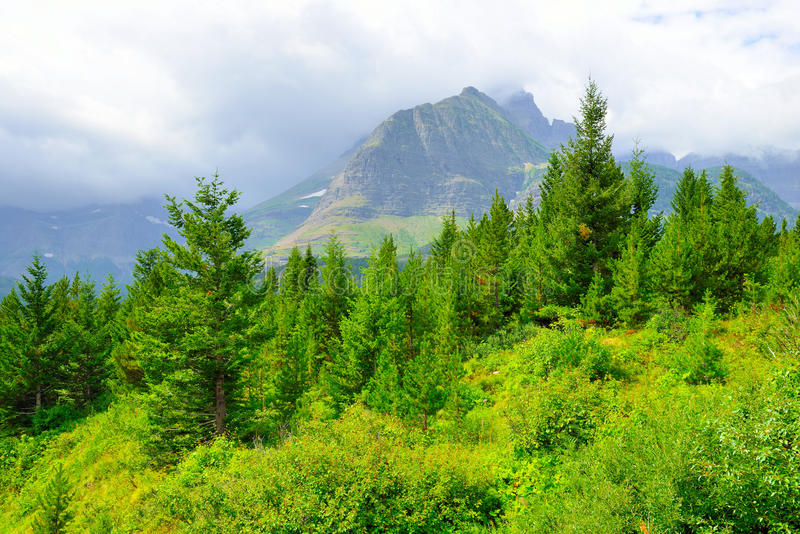 Download Paesaggio Del Glacier National Park Immagine Stock - Immagine di neve, nubi: 55357717