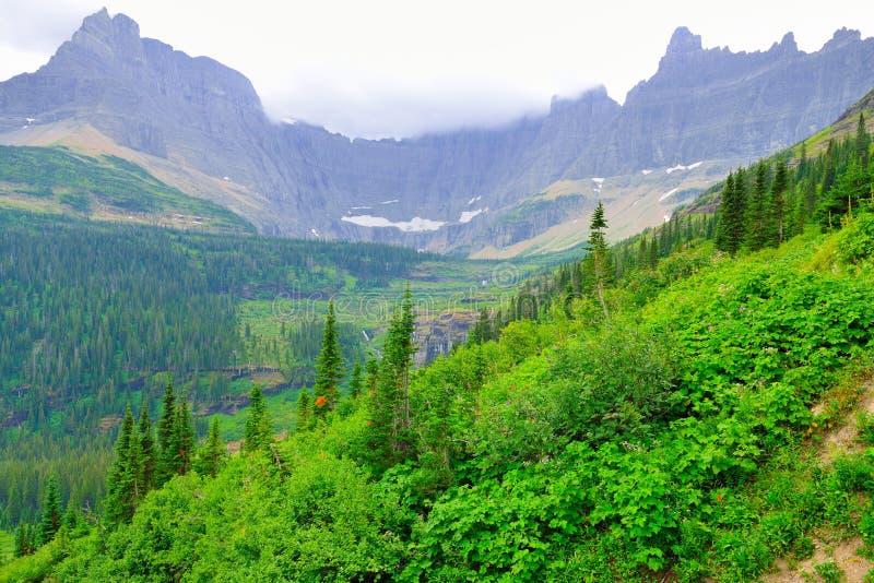 Download Paesaggio Del Glacier National Park Immagine Stock - Immagine di luminoso, partenza: 55357755