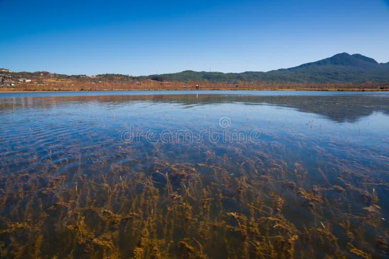 Paesaggio del lago Lashi fotografie stock