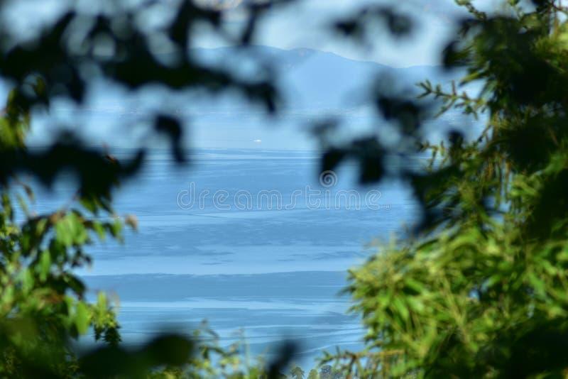 Paesaggio del lago Lemano fra alcuni alberi fotografia stock