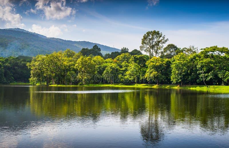 Paesaggio del lago mountain fotografie stock