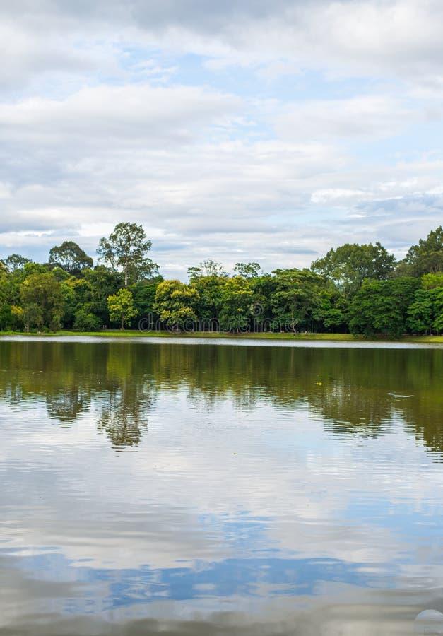 Paesaggio del lago mountain immagini stock libere da diritti