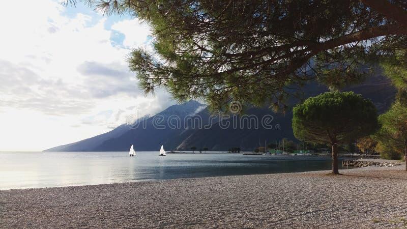 Paesaggio del lago mountain, due barche a vela bianche, pini immagini stock libere da diritti