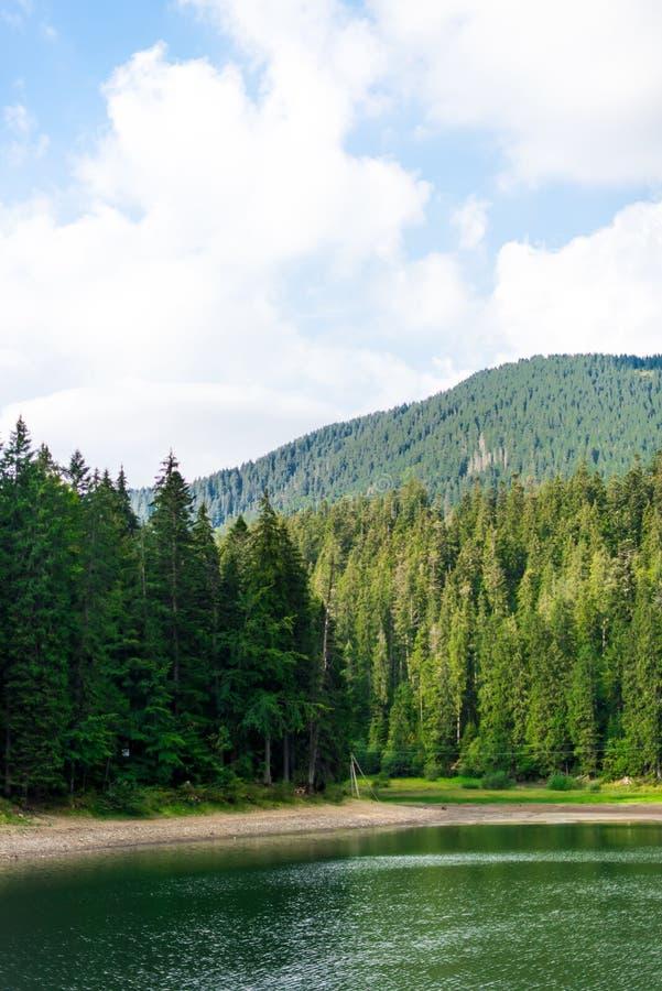 Paesaggio del lago Synevir in montagne carpatiche fotografia stock libera da diritti
