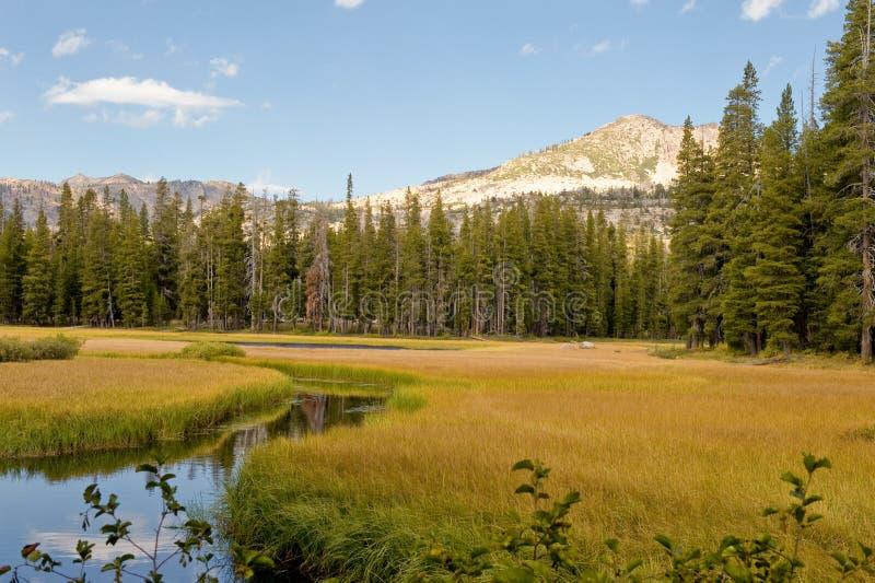 Paesaggio del lago Wrights immagini stock