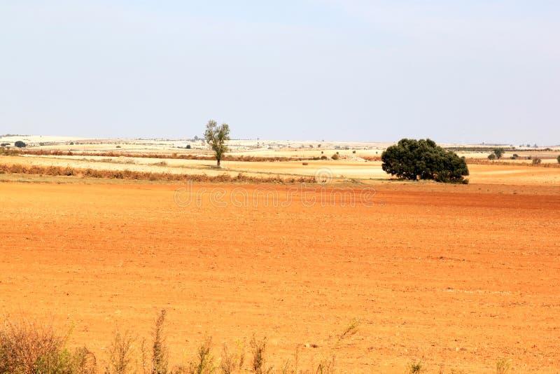Paesaggio del loess in Spagna vicino ad Albacete fotografie stock