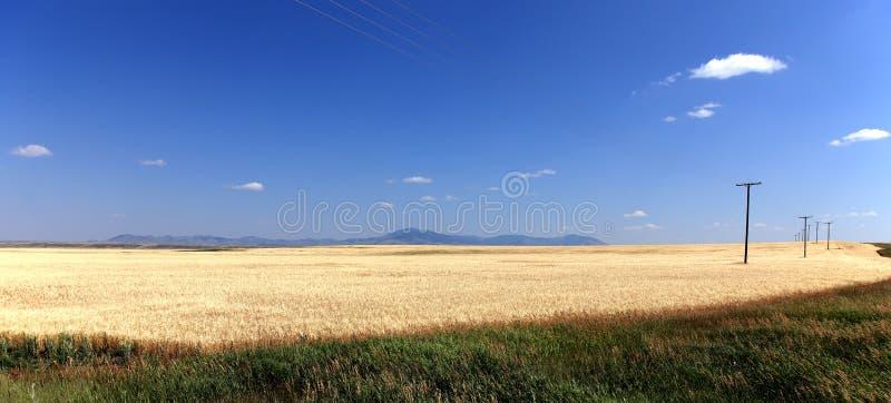 Paesaggio del Montana fotografia stock libera da diritti