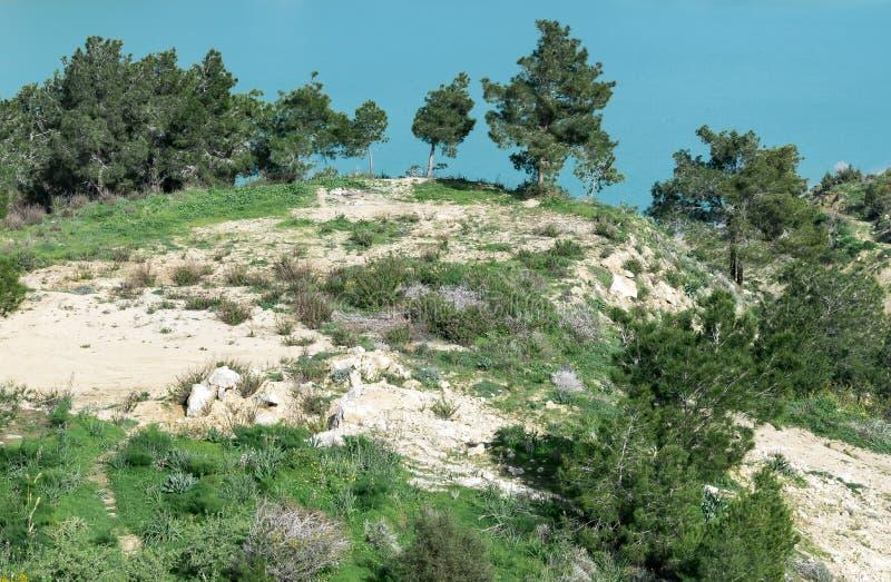 Paesaggio del Nord del Cipro Vista della collina con gli alberi del Th accanto al bacino idrico d'acqua dolce fotografia stock
