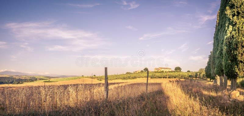 Paesaggio del paese di estate fotografia stock libera da diritti