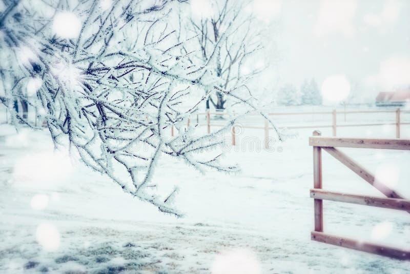 Paesaggio del paese di giorno di inverno con ricciolo congelato, neve ed il recinto di legno, natura all'aperto fotografia stock