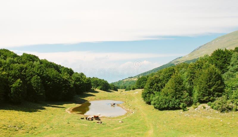 Paesaggio del paese in montagne di Monte Baldo fotografia stock libera da diritti