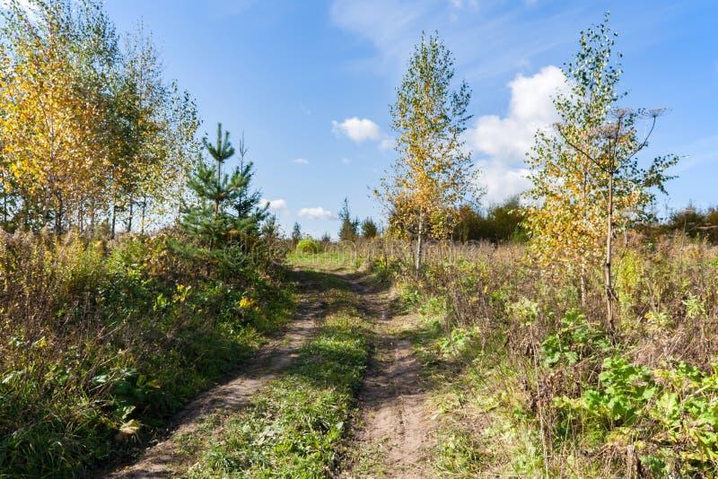 Paesaggio del paese nel giorno caldo e soleggiato di autunno fotografia stock