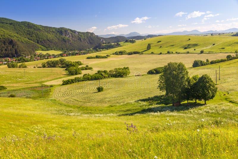 Paesaggio del paese in Slovacchia del Nord fotografia stock