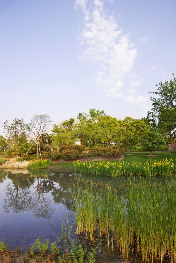 Download Paesaggio del parco fotografia stock. Immagine di colorful - 30830120